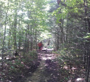 Robert and Jennifer approach via a beautiful path over arched with trees