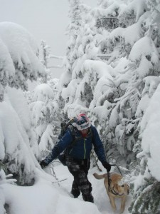 Randy and Quinn trek through snowy trees.
