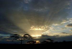 Breathtaking view of the Serengeti. (Photo from www.climbkili.com.)