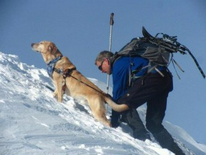 Randy and his former Guide Dog Quinn climb one of the NH 4,000-footers during the winter of 2012-2013.