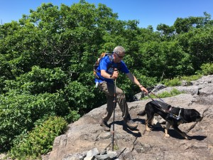 Randy and Autumn, a black and tan labrador retriever guide dog, navigate a rocky mountain slab.