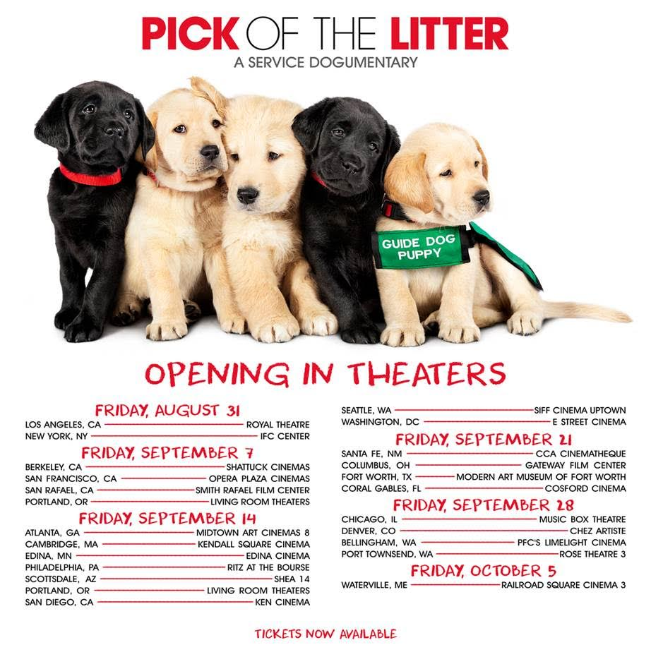 Headline reads: Pick of the Litter, a service dogumentary. Under the headline is an image of five guide dog puppies sitting squished together. The yellow Lab on the end has a green puppy coat on. Other pups have red or green collars. Below the puppies is red text: Opening in Theaters followed by dates and locations. FYI, all dates and locations can be found on guidedogs.com/pickofthelitter.