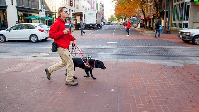 A visually impaired man in a red jacket walks down a city street led by a guide dog.