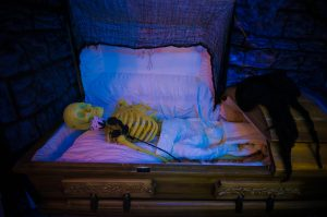 A plastic skeleton in a coffin