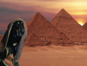 Autumn is shown here with a head covering, photoshopped in front of an Egyptian pyramid.