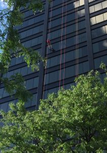 Randy rappels as we view him coming down the building through a frame of trees